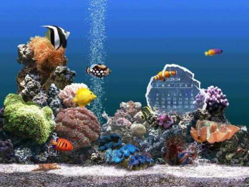 SereneScreen Marine Aquarium 3.0 - T�l�charger 3.0